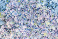 Blue flower petals abstract background of with violet tinge Royalty Free Stock Photo