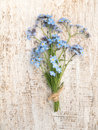 Blue forget-me-not flowers bouquet Royalty Free Stock Photo