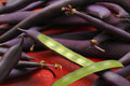 Blue french beans purple beans with one cut off bean pod Royalty Free Stock Image