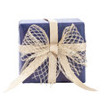 Blue gift box with gold ribbon Stock Image