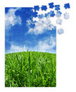 Blue & green grass puzzle Royalty Free Stock Image