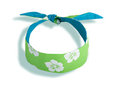 Blue and green headband Stock Photos