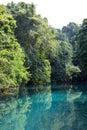 Blue Hole, Vanuatu Royalty Free Stock Photo