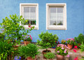 Blue house front with two windows, mediterranean flower pots Royalty Free Stock Photo