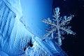 Blue Ice Crystal Snowflake
