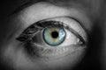 Blue iris eye.