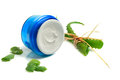 Blue jar of face cream with aloe vera leaves Royalty Free Stock Images