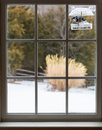 Blue Jay in window bird feeder on snowy day Royalty Free Stock Photo