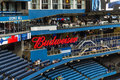 Blue jaysbbudweiser sign jays winning banners at rodger stadium Royalty Free Stock Image