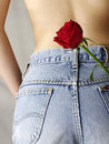 Blue jean pocket with a red rose Stock Image