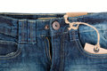 Blue jeans and fly Royalty Free Stock Photo