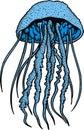 Blue jellyfish Royalty Free Stock Photo
