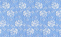 Blue lace Royalty Free Stock Photo
