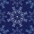 Blue lace1. Stock Images