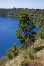 Blue lake mount gambier south australia pine tree on mt Stock Photos
