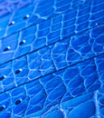 Blue Leather belts