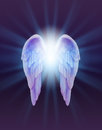 Blue and Lilac Angel Wings on a dark background Royalty Free Stock Photo