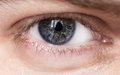 Blue man eye macro shot shallow depth of field Royalty Free Stock Photography