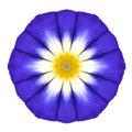 Blue mandala flower ornament kaleidoscope pattern isolated round design on white background Royalty Free Stock Photos