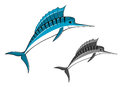 Blue marlin fish in cartoon style for fishing sports design Stock Photo