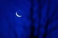 Modrý měsíc scenérie
