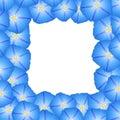 Blue Morning Glory Flower Border. Vector Illustration Royalty Free Stock Photo