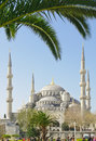 Blue Mosque Royalty Free Stock Photography