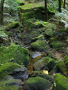 Blue Mountains National Park, UNESCO, Australia Royalty Free Stock Image
