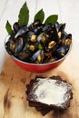 Blue mussels with pumpernickel bread Stock Photo