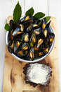 Blue mussels with pumpernickel bread Stock Images