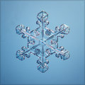 Blue natural snowflake macro piece of ice Royalty Free Stock Photo