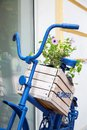 Blue old bicycle with flowers box Royalty Free Stock Photo