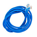 Blue patch cord with RJ45 plugs. Royalty Free Stock Images
