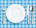 Blue Picnic Blanket Plate Spoon Knife Fork