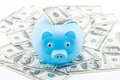 Blue piggy bank on dollars concept of saving by Royalty Free Stock Photo