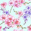 Blue and pink orchid flowers on light blue background. Seamless floral pattern.  Watercolor painting. Hand drawn illustration. Royalty Free Stock Photo