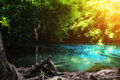 Blue pool at Emerald Pool is unseen pool in mangrove forest at K Royalty Free Stock Photo