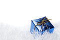 Blue present box Royalty Free Stock Photo
