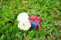 Blue present box with red ribbon Royalty Free Stock Photo