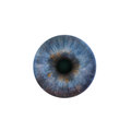 Blue pupil of the human eye Royalty Free Stock Photo