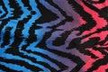 Blue purple pink zebra pattern degrade animal print as background Stock Image