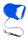 Blue retractable leash for dog top view Stock Photos