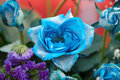 Blue roses decorative commodity of dyeing Royalty Free Stock Photography