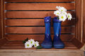 Blue rubber boots with  spring flowers Royalty Free Stock Photo