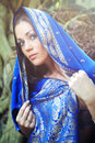 Blue sari Stock Images