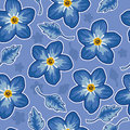 Blue seamless pattern with flowers Royalty Free Stock Photo