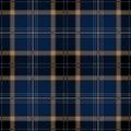 Blue Seamless Tartan Plaid Royalty Free Stock Photo