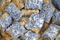 Blue shredded wheat macro of blueberry cereal in milk Stock Photos