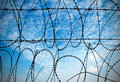 Blue sky and barbed wire Stock Photos