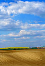 Blue sky and fields colorful cloudy Stock Image